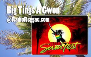 Reggae SumFest 95 - Enjoy the whole show with Rasjohnmon