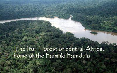 BAMLIKI BANDULA – Children of Spirit*